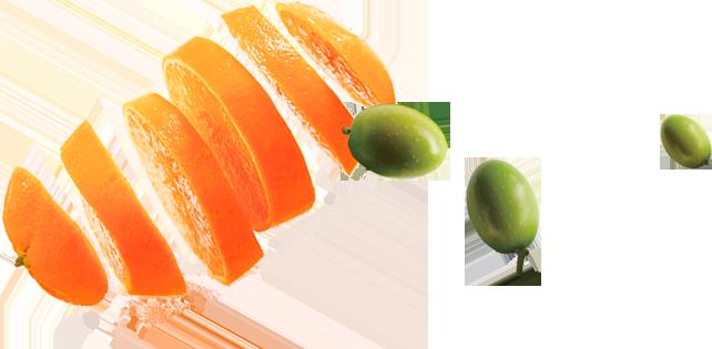 barman-home-sliced-orange